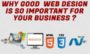 Why Website Design is Important for Business
